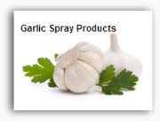 Garlic Spray Canada