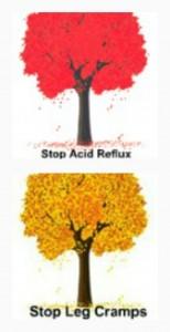 Caleb Treeze Stop Acid Reflux Stop Leg Cramps